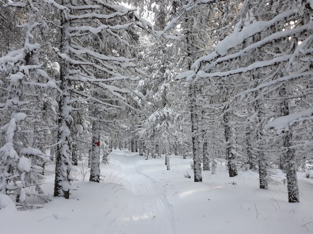 Фэн-Шуй - тур, гора Иремель 2019